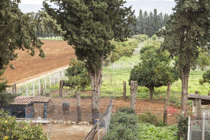 fattoria sicilia