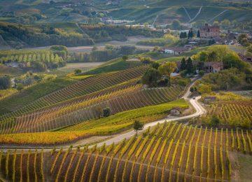 Piemonte-e1546861705732