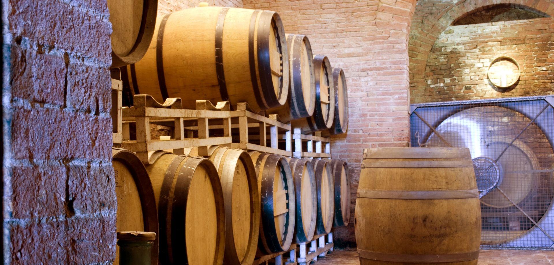Lezione sui vini naturali in Toscana