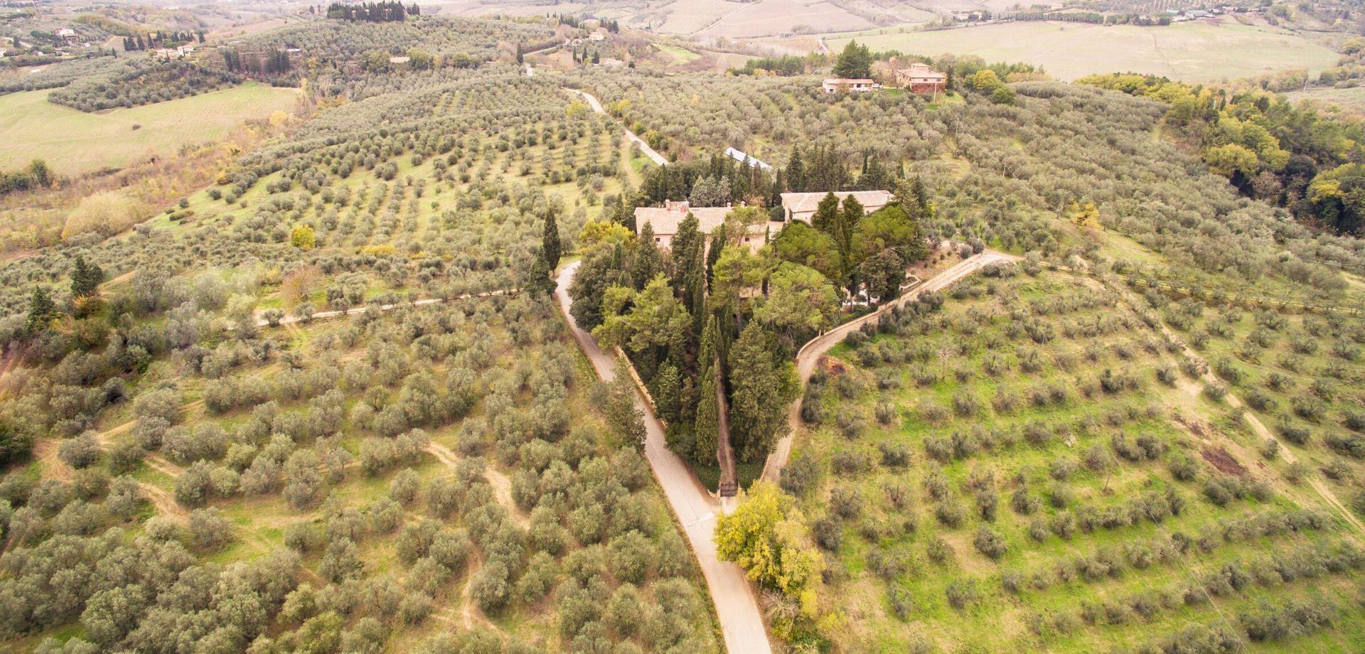 Degustazione olio toscano a Certaldo