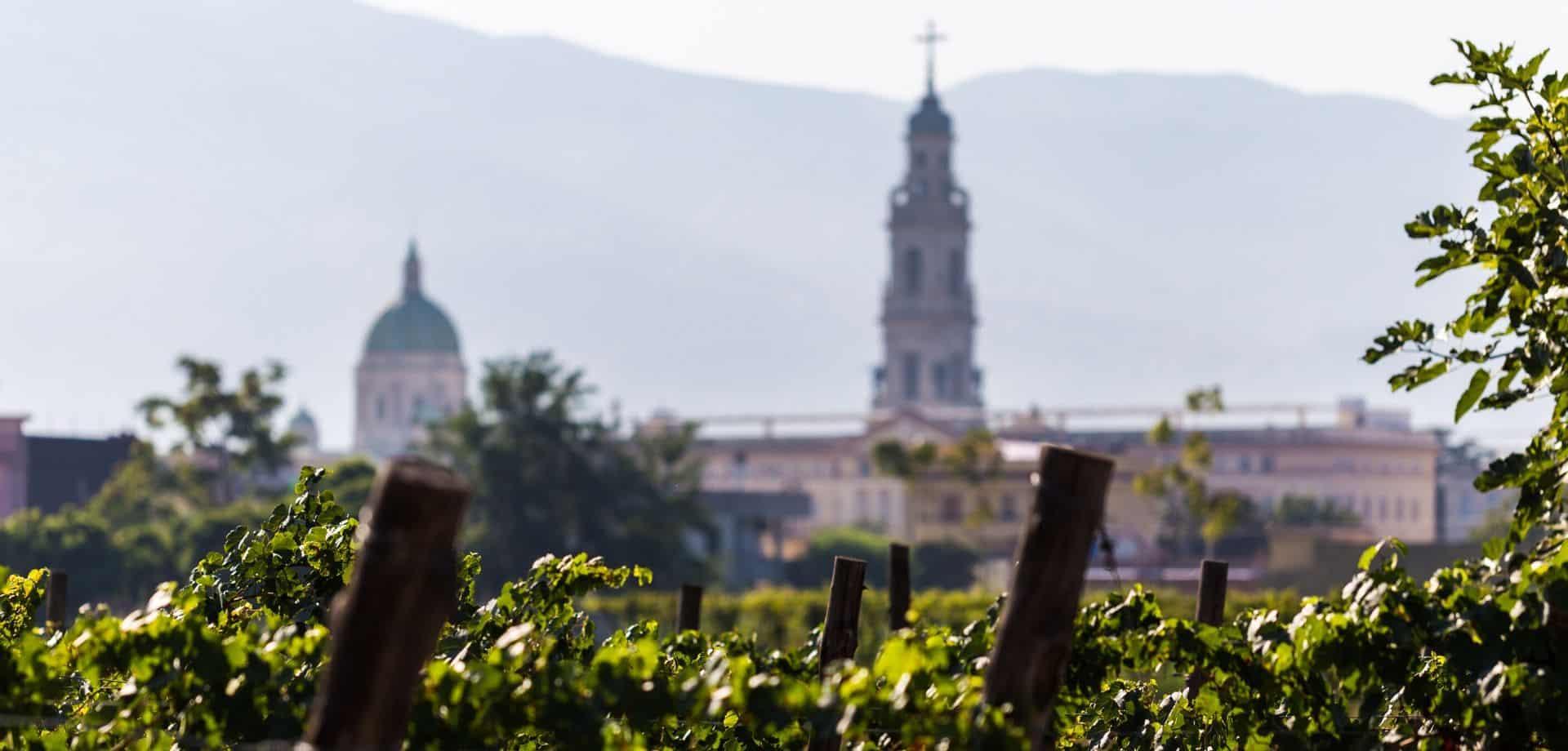 Visitare Pompei fra vino e cucina