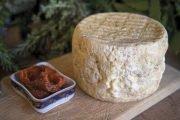 degustazione formaggi roma