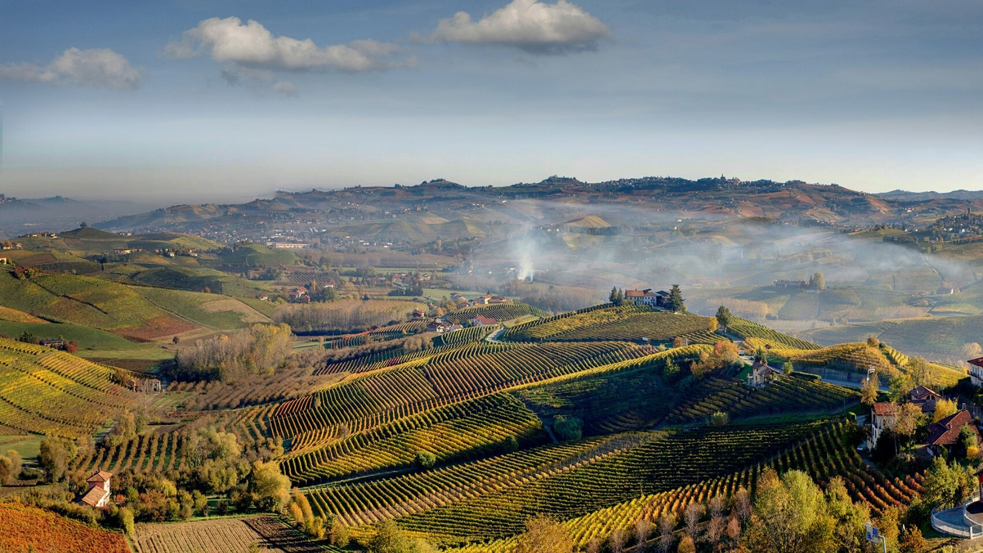 langhe degustazione vini