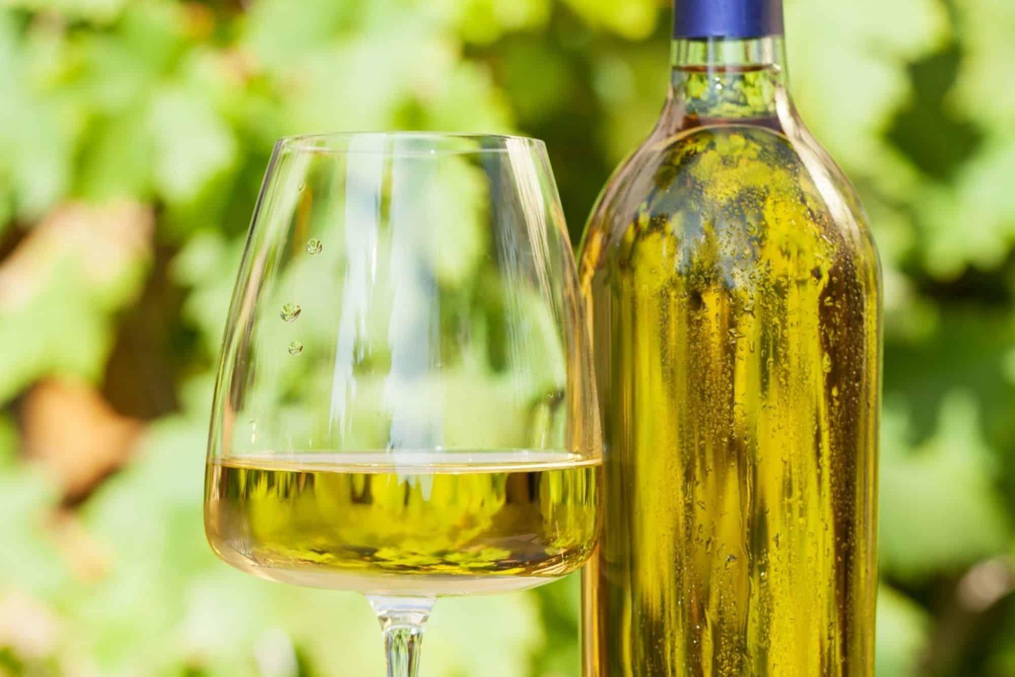 vino bianco campano