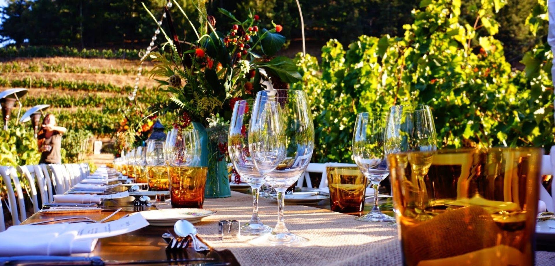 Cena in vigna a Montepulciano